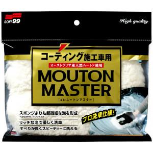 Tvätthandske Ull Soft99 Mouton Master